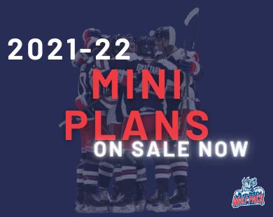 Mini Plans on Sale